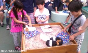 《動画》 なかよし広場に 子供たち集合! 横浜・野毛山動物園